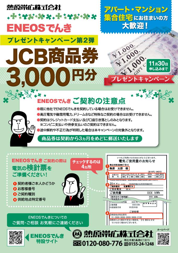 denki-jcb-campaign01-2009.jpg